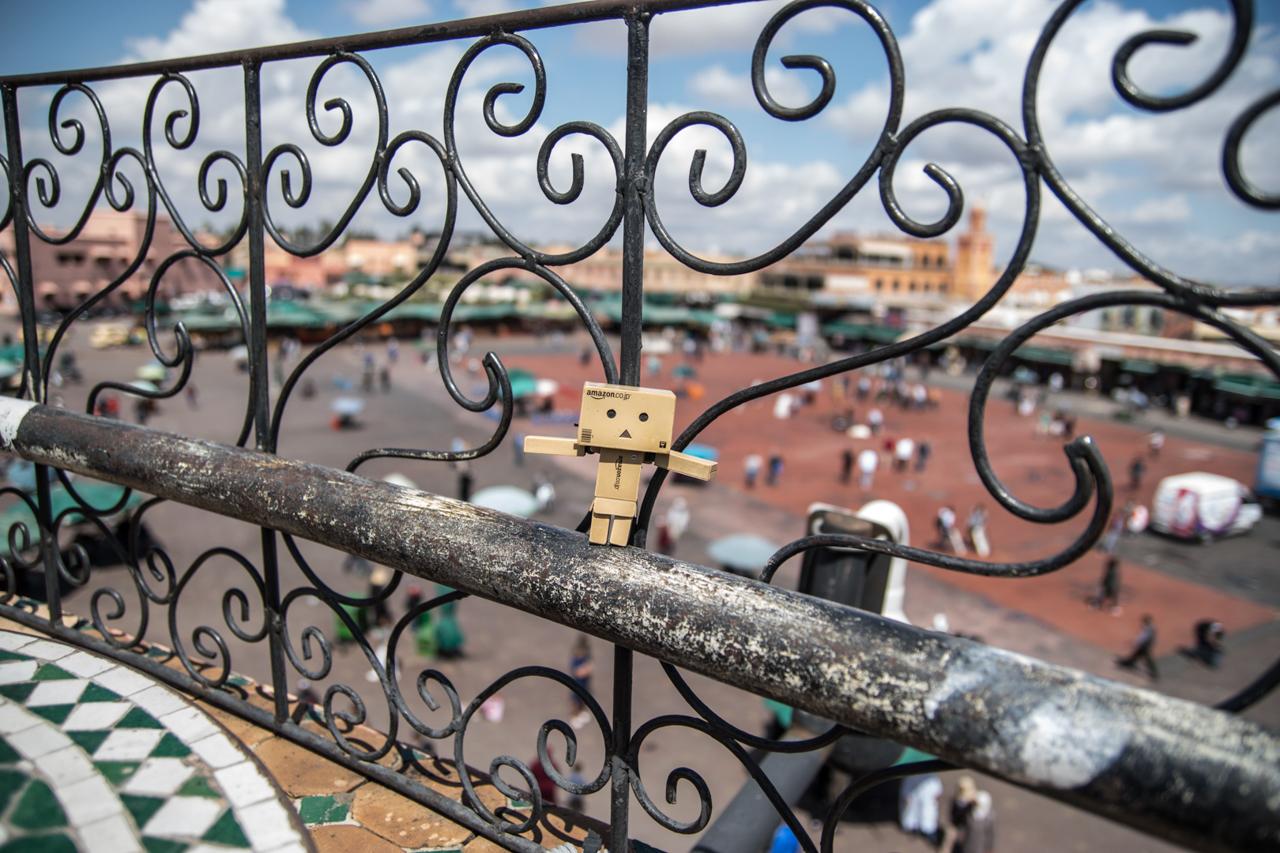 Danbo en Marrakech